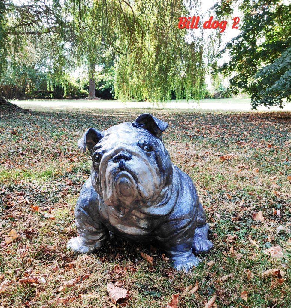 Bill Dog (Image 2)